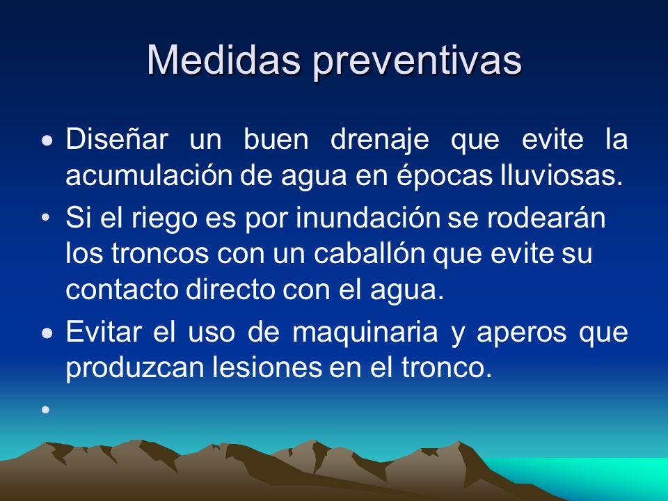 Medidas preventivas Diseñar un buen drenaje que evite la acumulación de agua en épocas lluviosas.