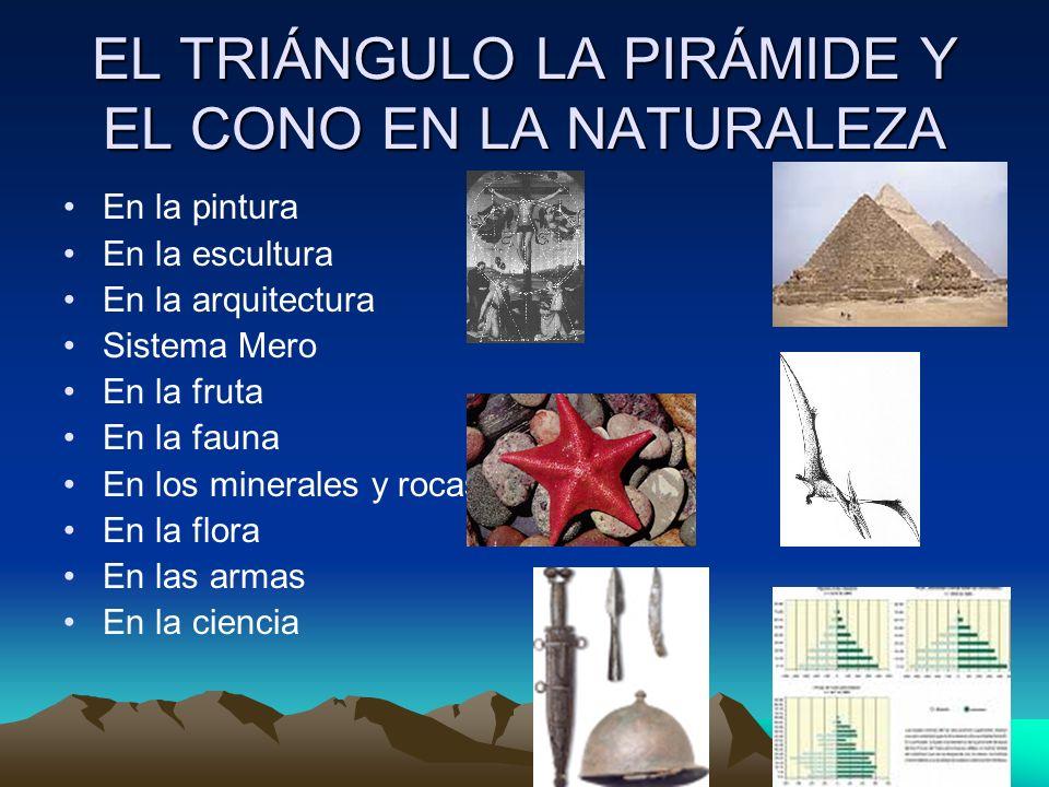 EL TRIÁNGULO LA PIRÁMIDE Y EL CONO EN LA NATURALEZA