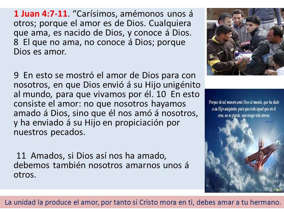 1 Juan 4:7-11. Carísimos, amémonos unos á otros; porque el amor es de Dios. Cualquiera que ama, es nacido de Dios, y conoce á Dios. 8 El que no ama, no conoce á Dios; porque Dios es amor.
