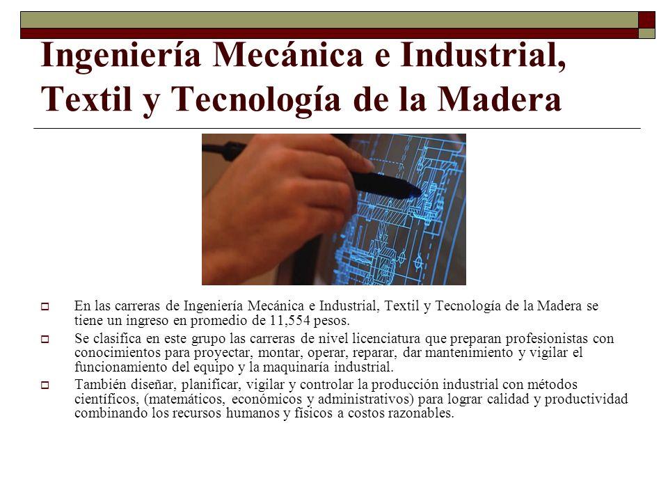 Ingeniería Mecánica e Industrial, Textil y Tecnología de la Madera