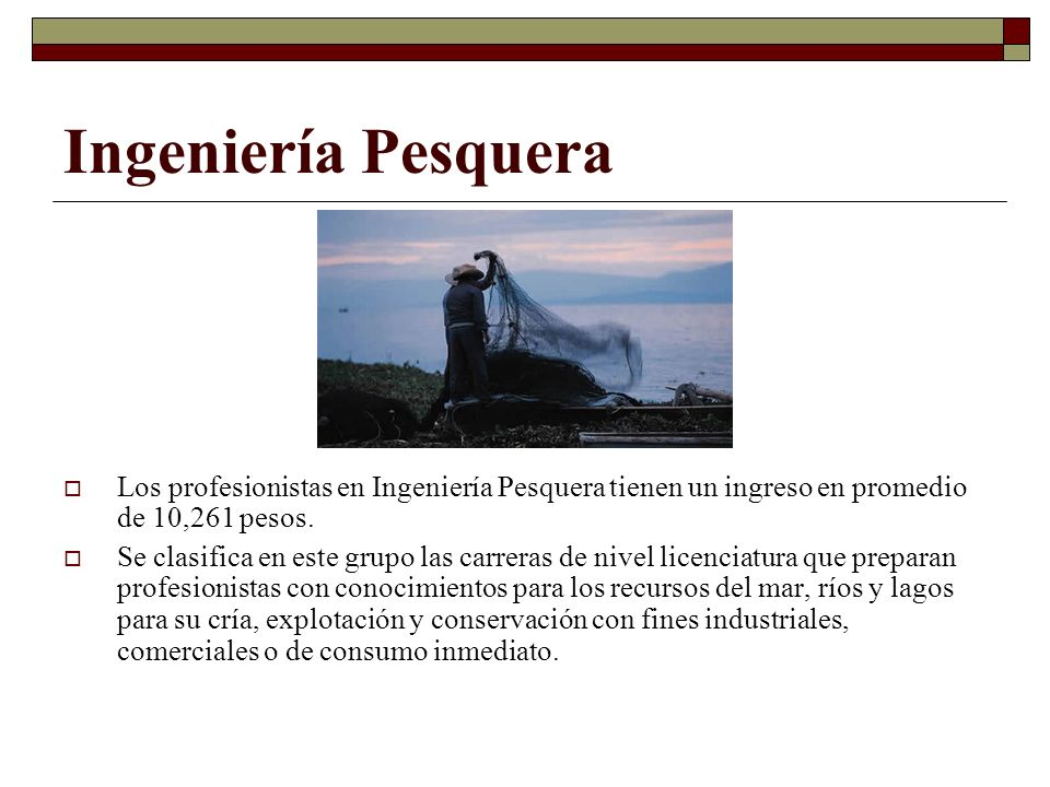Ingeniería Pesquera Los profesionistas en Ingeniería Pesquera tienen un ingreso en promedio de 10,261 pesos.