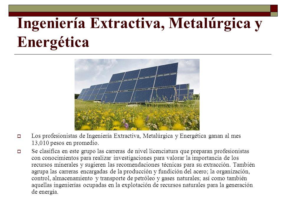 Ingeniería Extractiva, Metalúrgica y Energética