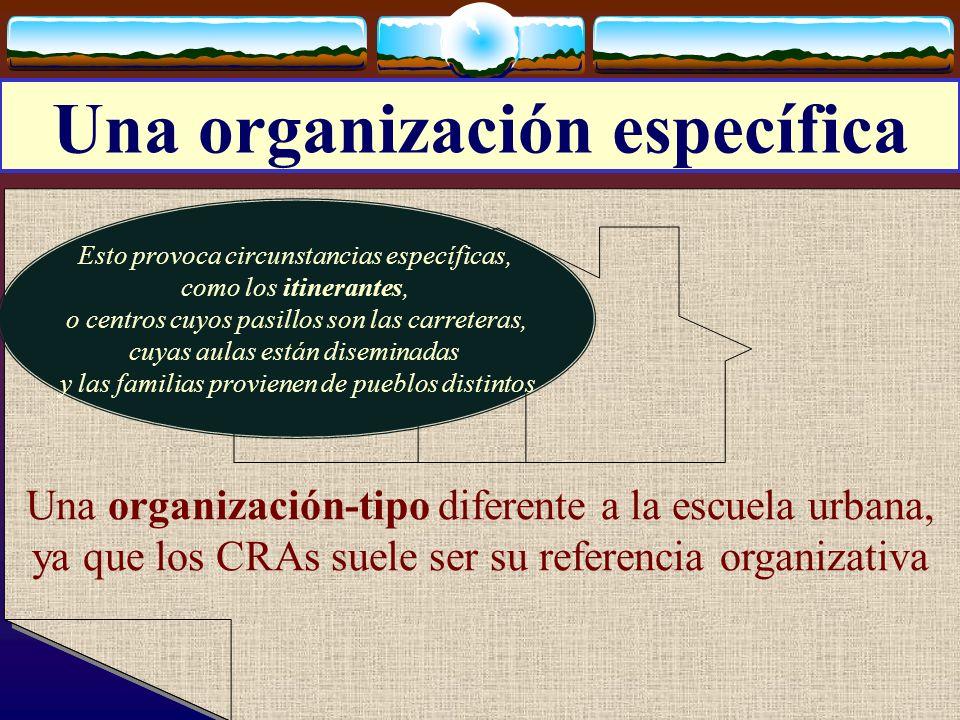 Una organización específica