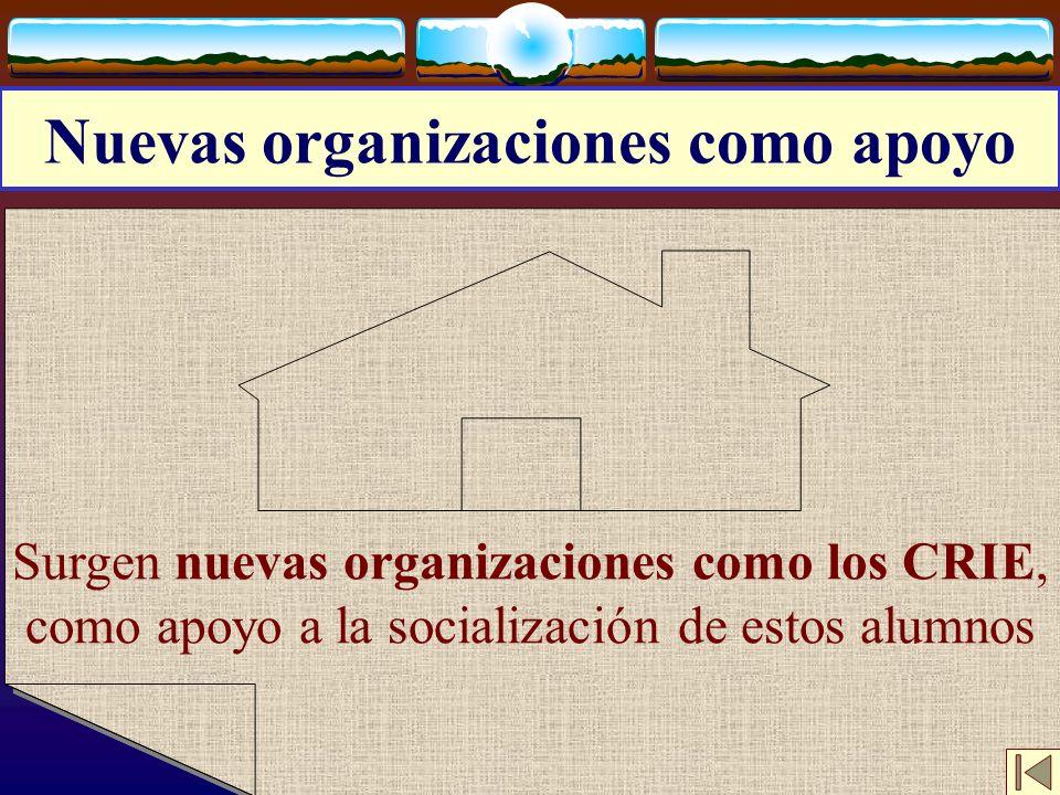 Nuevas organizaciones como apoyo