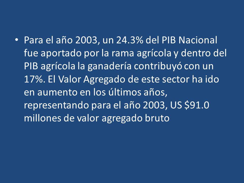 Para el año 2003, un 24.3% del PIB Nacional fue aportado por la rama agrícola y dentro del PIB agrícola la ganadería contribuyó con un 17%.