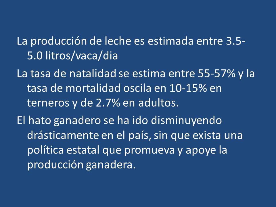 La producción de leche es estimada entre 3. 5-5
