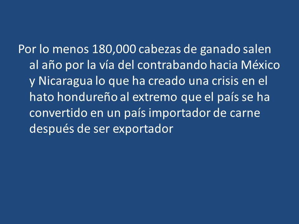 Por lo menos 180,000 cabezas de ganado salen al año por la vía del contrabando hacia México y Nicaragua lo que ha creado una crisis en el hato hondureño al extremo que el país se ha convertido en un país importador de carne después de ser exportador