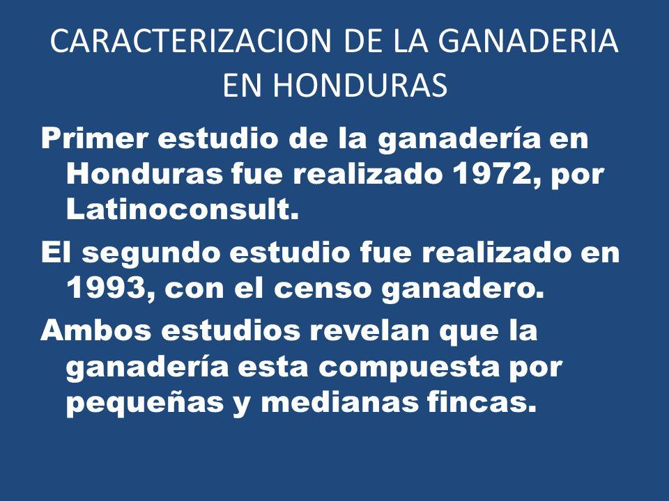 CARACTERIZACION DE LA GANADERIA EN HONDURAS
