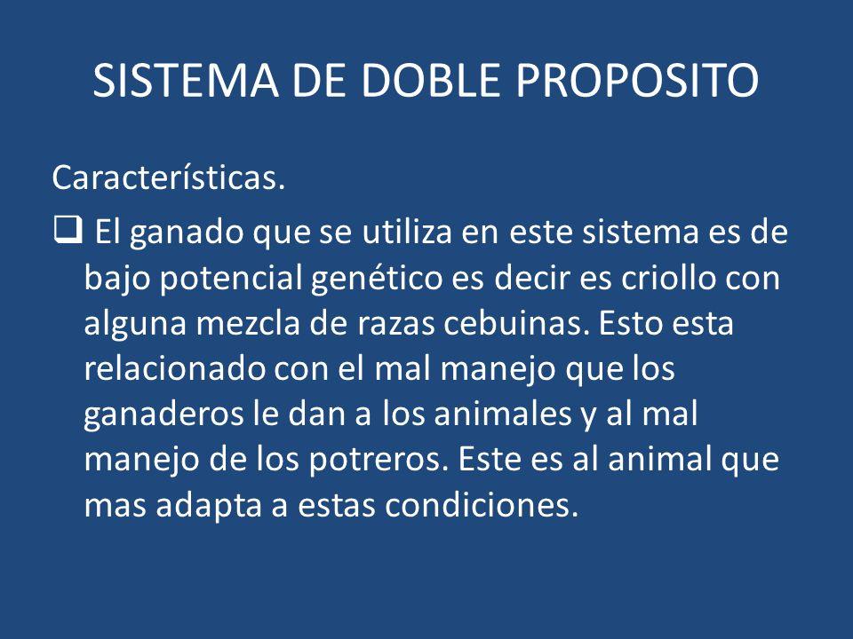 SISTEMA DE DOBLE PROPOSITO