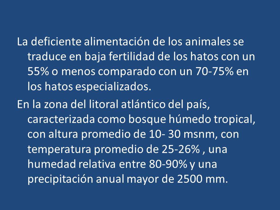La deficiente alimentación de los animales se traduce en baja fertilidad de los hatos con un 55% o menos comparado con un 70-75% en los hatos especializados.