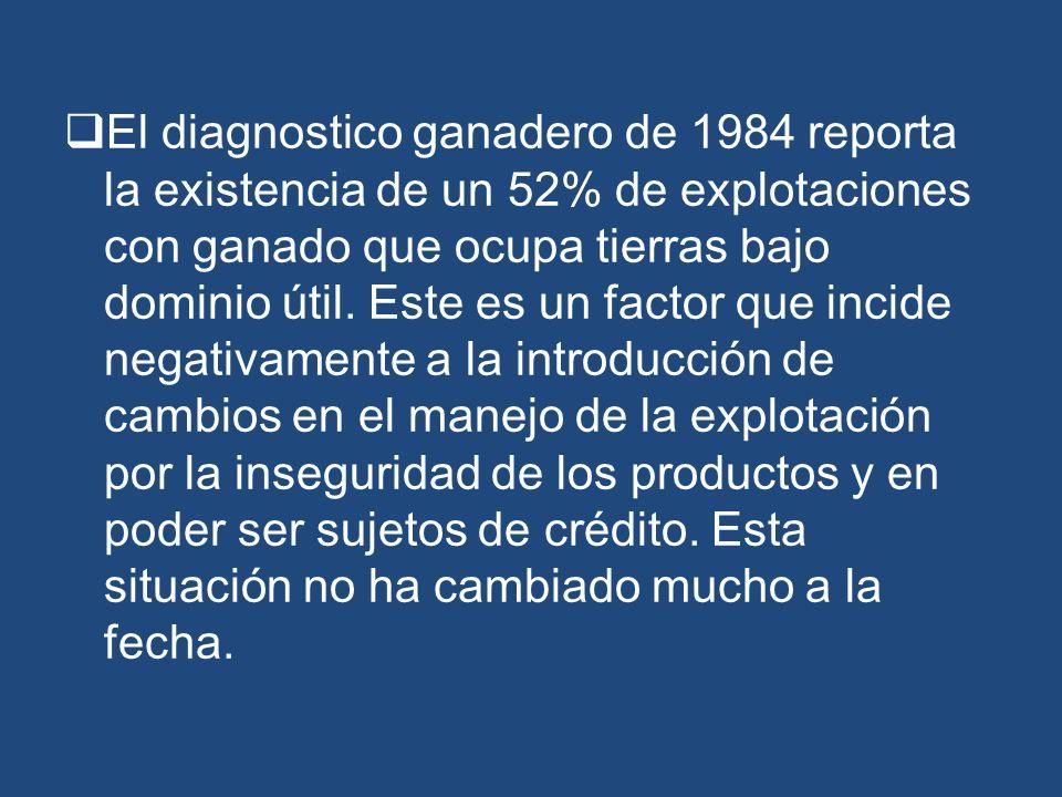 El diagnostico ganadero de 1984 reporta la existencia de un 52% de explotaciones con ganado que ocupa tierras bajo dominio útil.