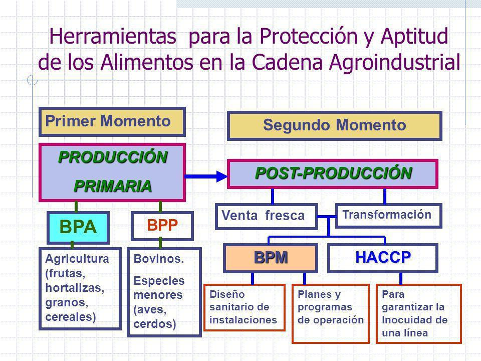Herramientas para la Protección y Aptitud de los Alimentos en la Cadena Agroindustrial