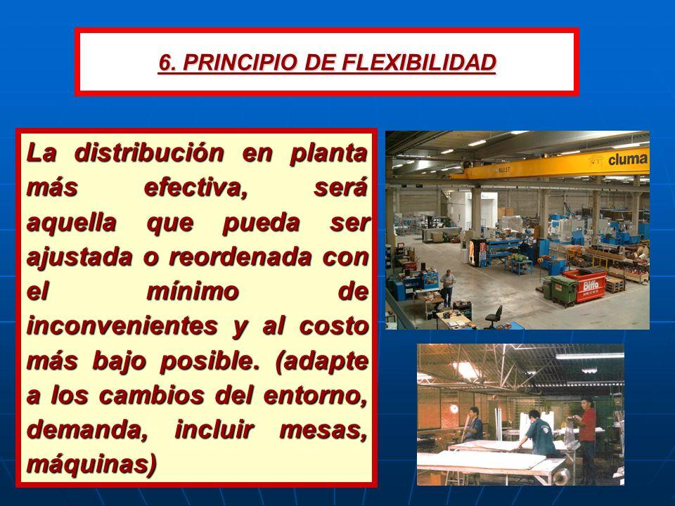 6. PRINCIPIO DE FLEXIBILIDAD
