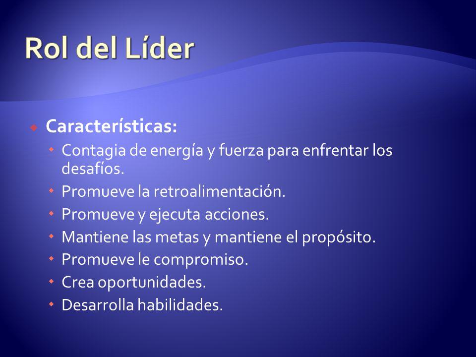Rol del Líder Características: