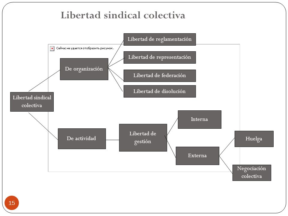 Libertad sindical colectiva