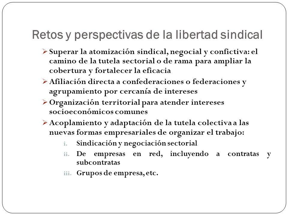 Retos y perspectivas de la libertad sindical