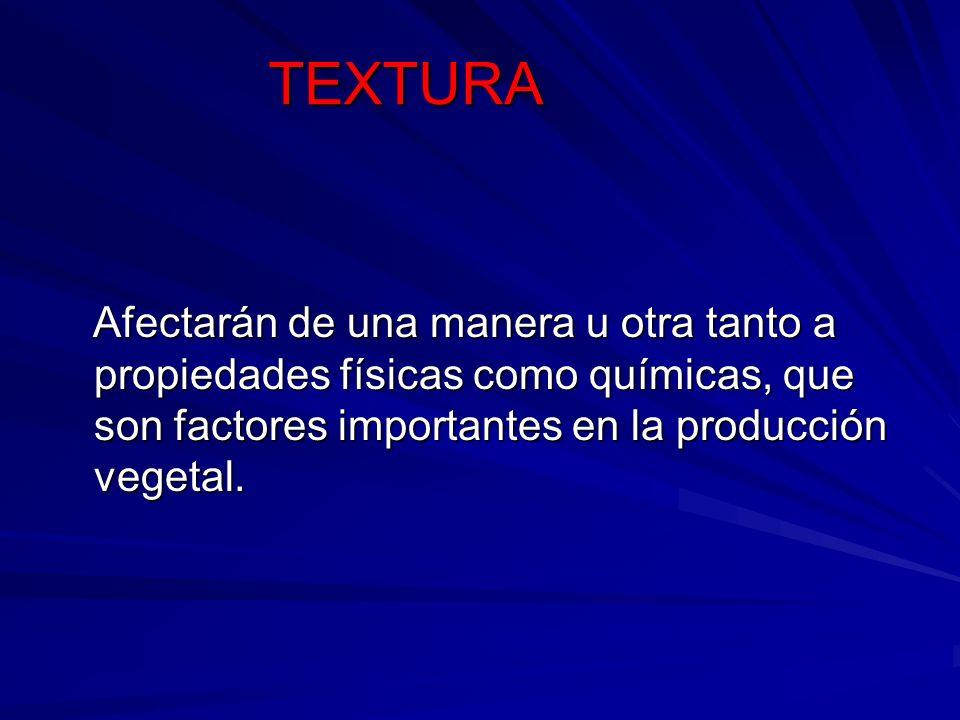 TEXTURAAfectarán de una manera u otra tanto a propiedades físicas como químicas, que son factores importantes en la producción vegetal.