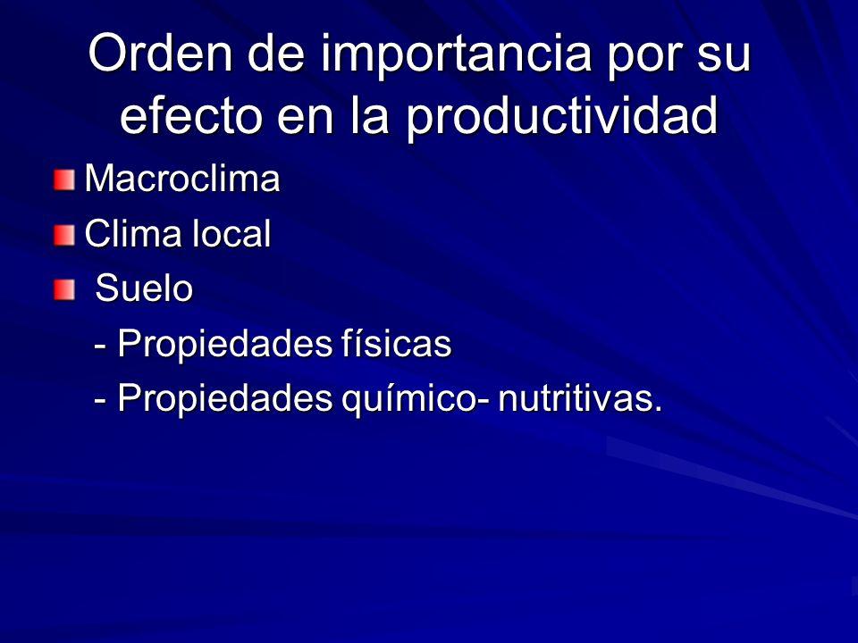 Orden de importancia por su efecto en la productividad