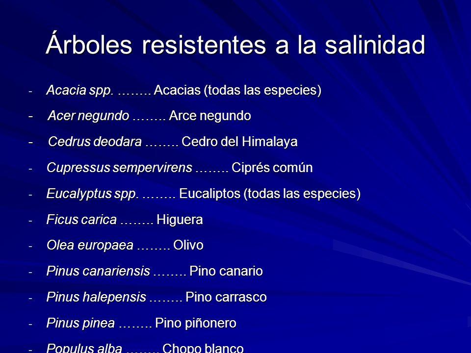 Árboles resistentes a la salinidad