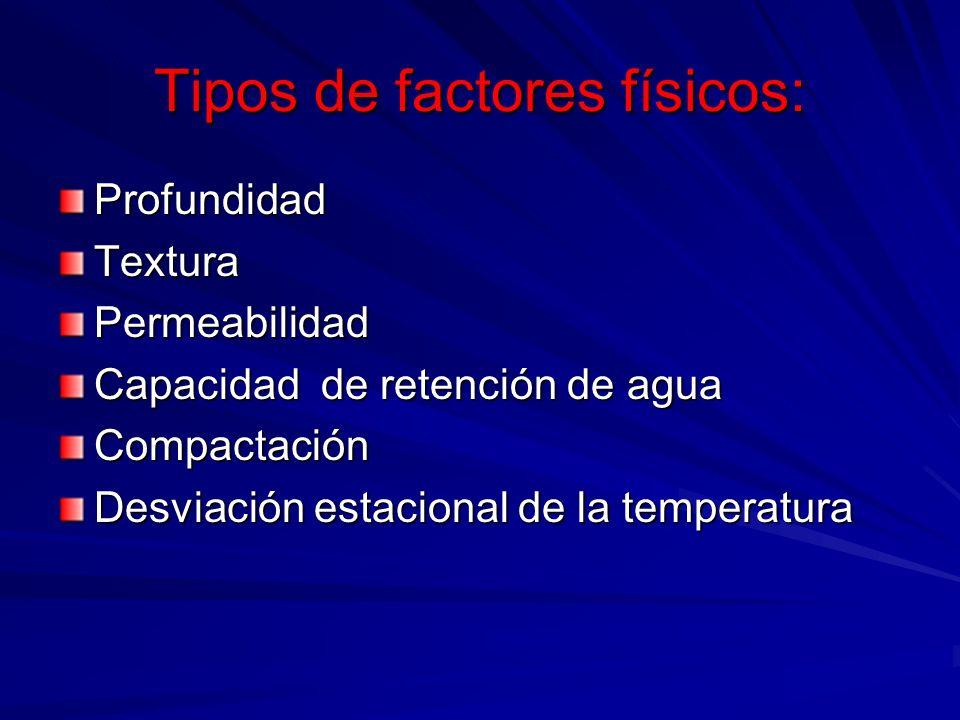 Tipos de factores físicos: