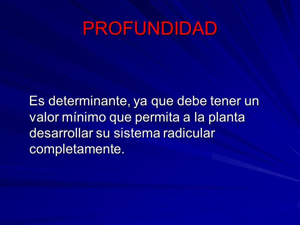 PROFUNDIDAD Es determinante, ya que debe tener un valor mínimo que permita a la planta desarrollar su sistema radicular completamente.