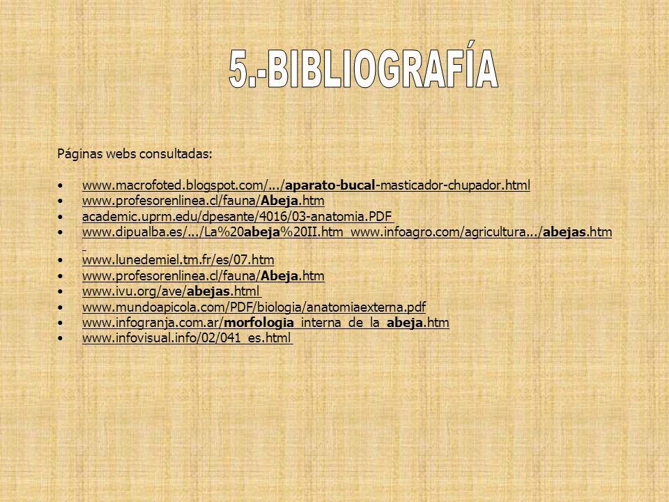 5.-BIBLIOGRAFÍA Páginas webs consultadas: