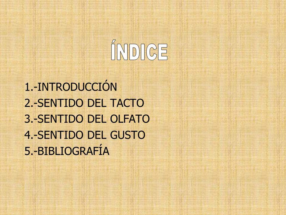 ÍNDICE 1.-INTRODUCCIÓN 2.-SENTIDO DEL TACTO 3.-SENTIDO DEL OLFATO