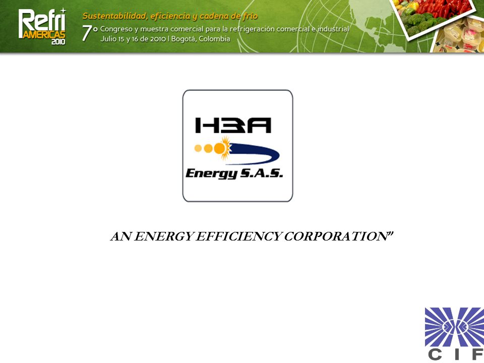 AN ENERGY EFFICIENCY CORPORATION