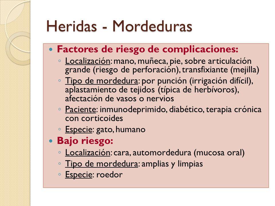 Heridas - Mordeduras Factores de riesgo de complicaciones: