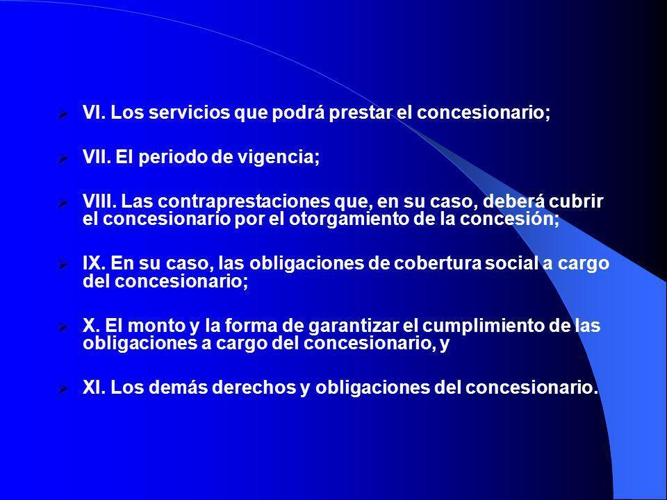 VI. Los servicios que podrá prestar el concesionario;