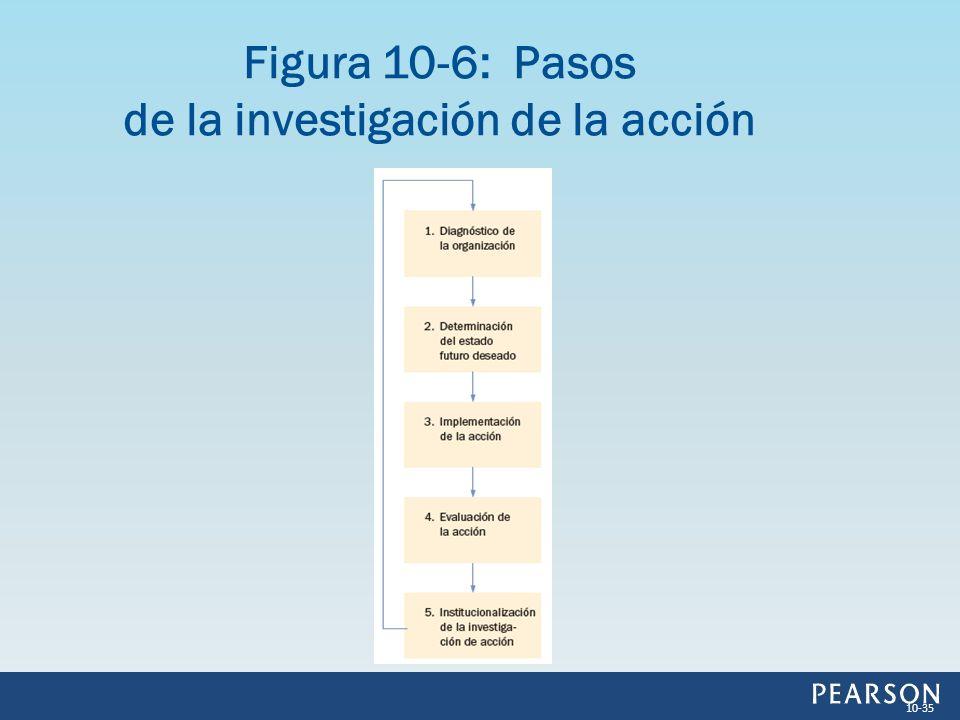 Figura 10-6: Pasos de la investigación de la acción