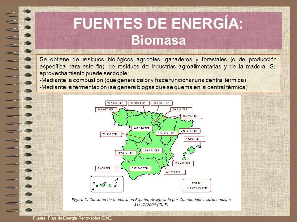 FUENTES DE ENERGÍA: Biomasa