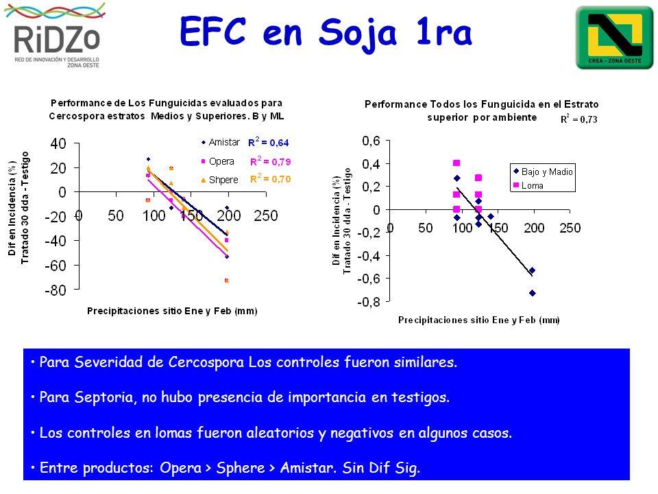 EFC en Soja 1raPara Severidad de Cercospora Los controles fueron similares. Para Septoria, no hubo presencia de importancia en testigos.