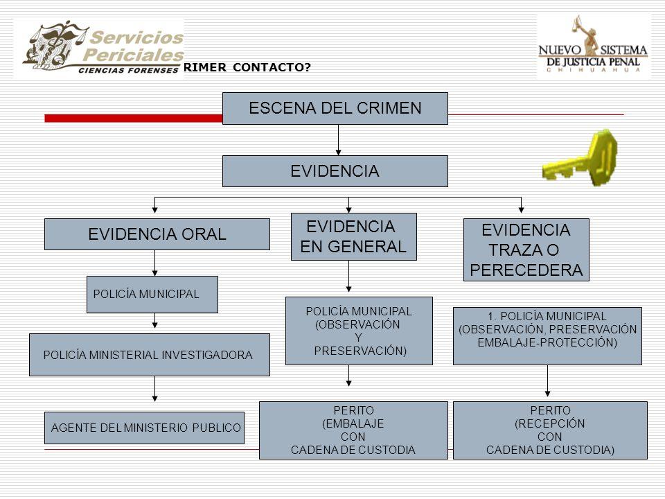 EVIDENCIA QUIEN TIENE EL PRIMER CONTACTO