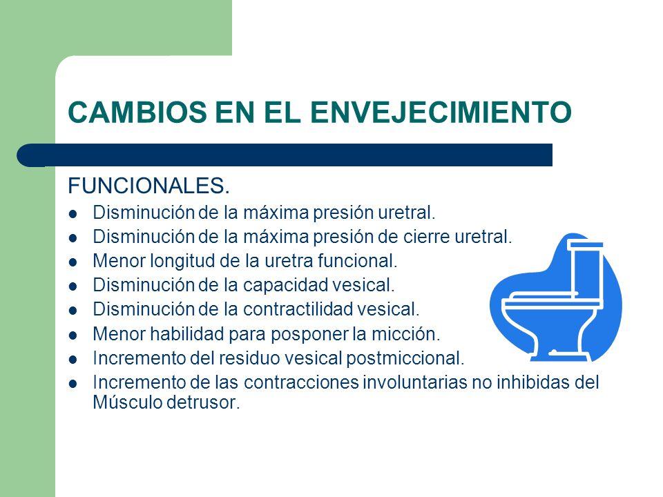 CAMBIOS EN EL ENVEJECIMIENTO