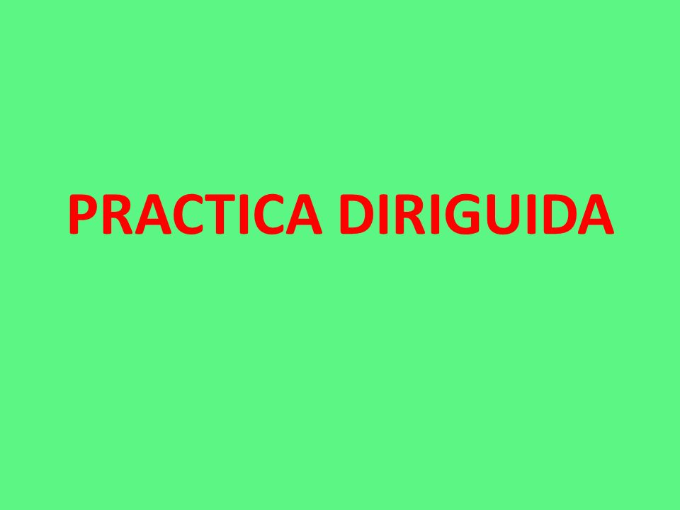 PRACTICA DIRIGUIDA
