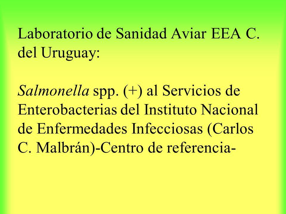 Laboratorio de Sanidad Aviar EEA C. del Uruguay: Salmonella spp