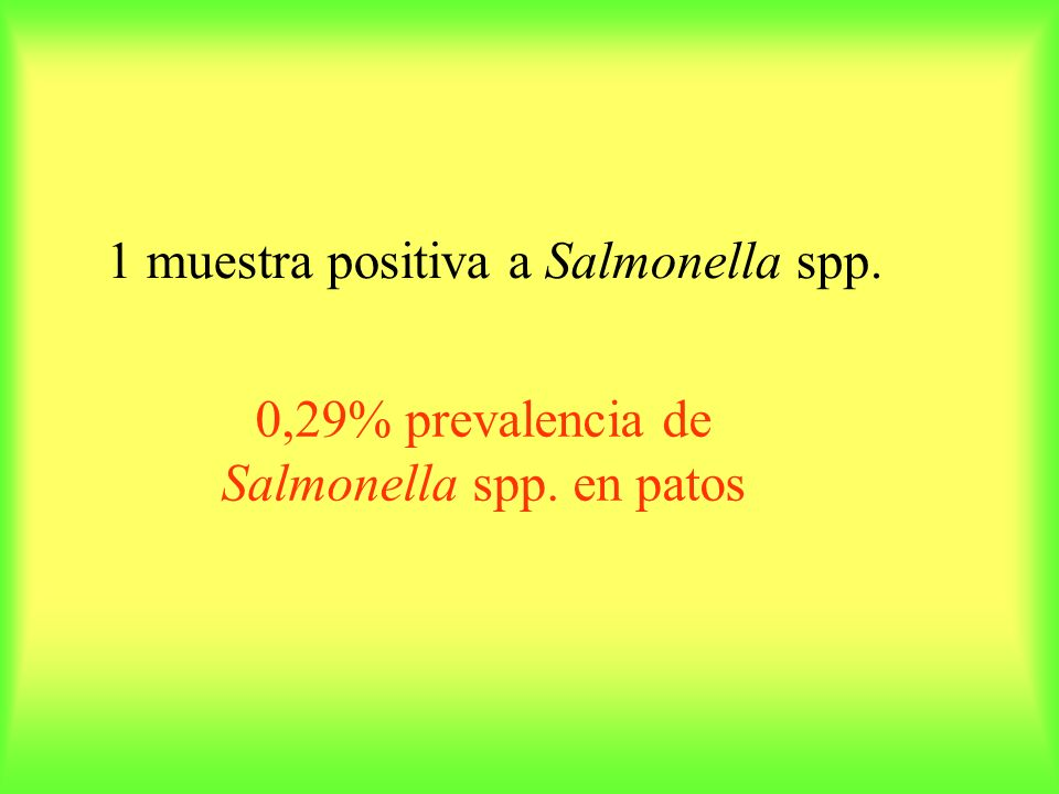 0,29% prevalencia de Salmonella spp. en patos