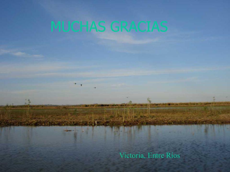 MUCHAS GRACIAS Victoria, Entre Ríos