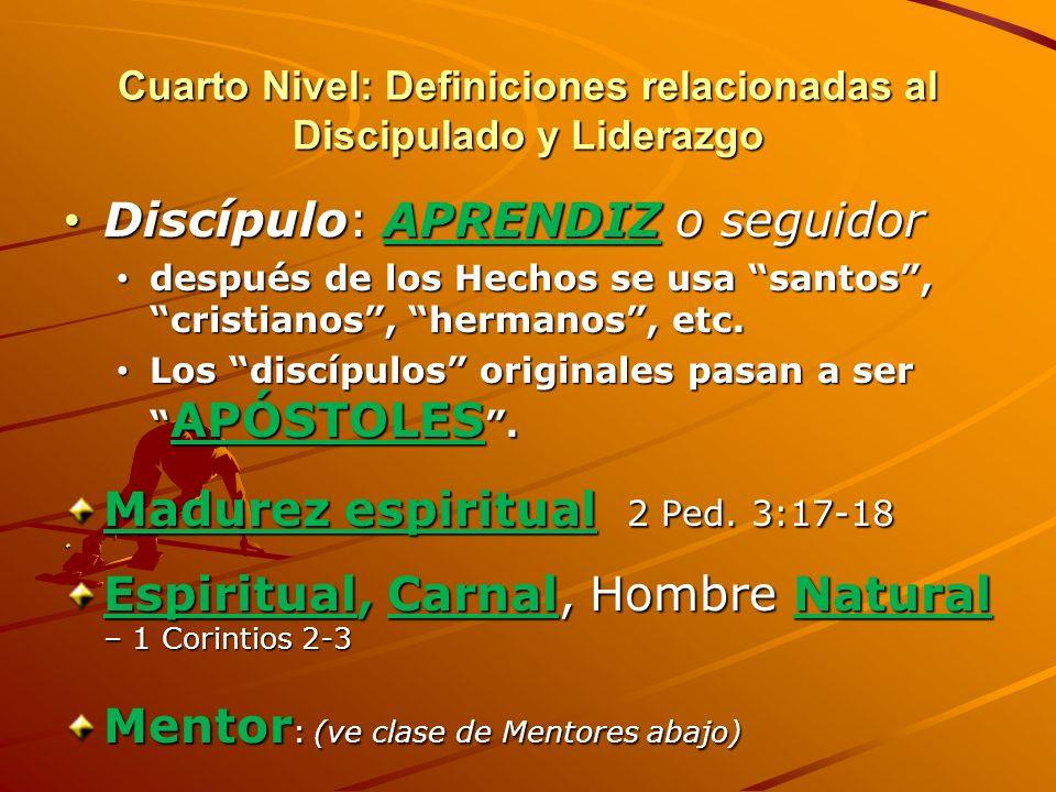 Cuarto Nivel: Definiciones relacionadas al Discipulado y Liderazgo