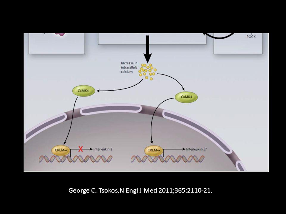 George C. Tsokos,N Engl J Med 2011;365:2110-21.