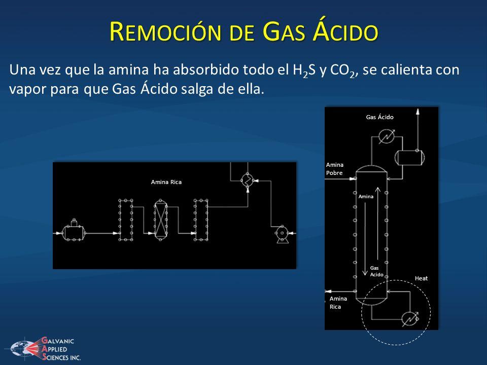 Remoción de Gas Ácido Una vez que la amina ha absorbido todo el H2S y CO2, se calienta con vapor para que Gas Ácido salga de ella.