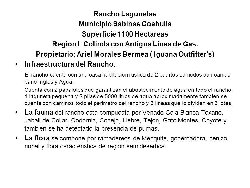 Municipio Sabinas Coahuila Superficie 1100 Hectareas