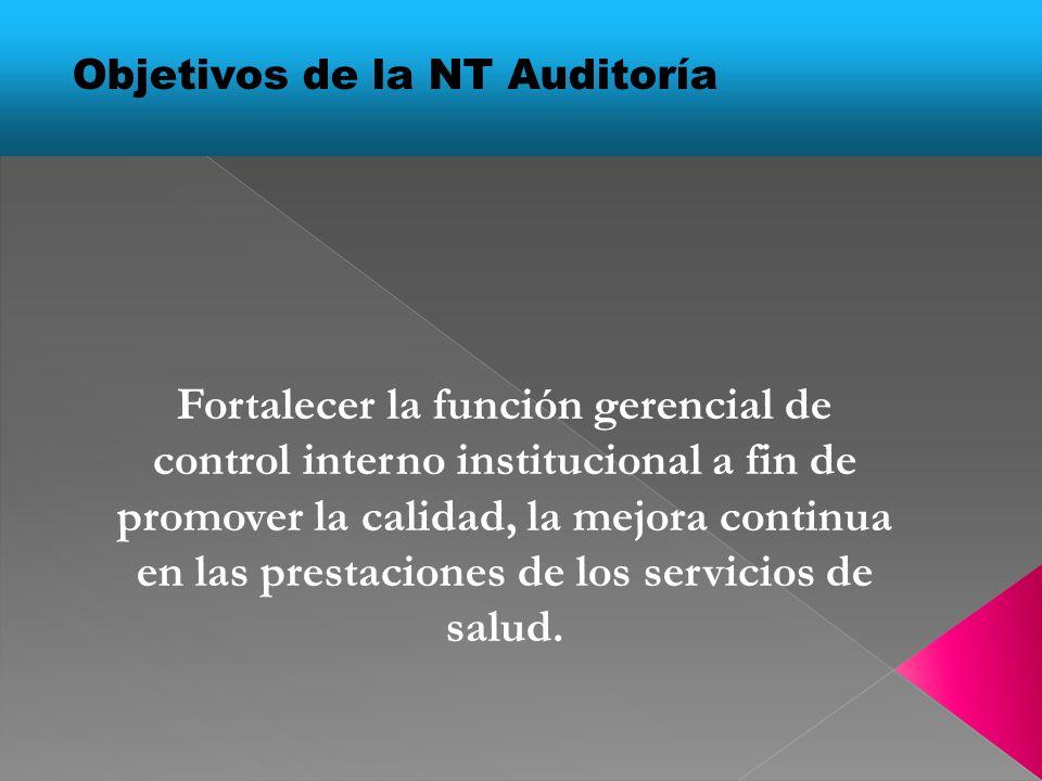Objetivos de la NT Auditoría