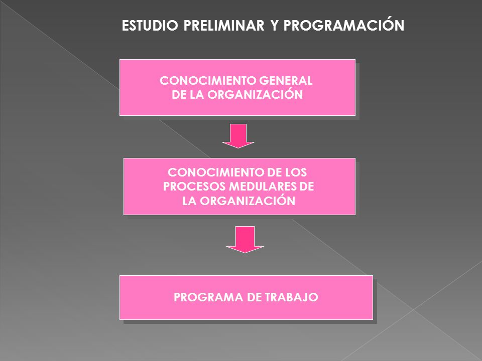 ESTUDIO PRELIMINAR Y PROGRAMACIÓN