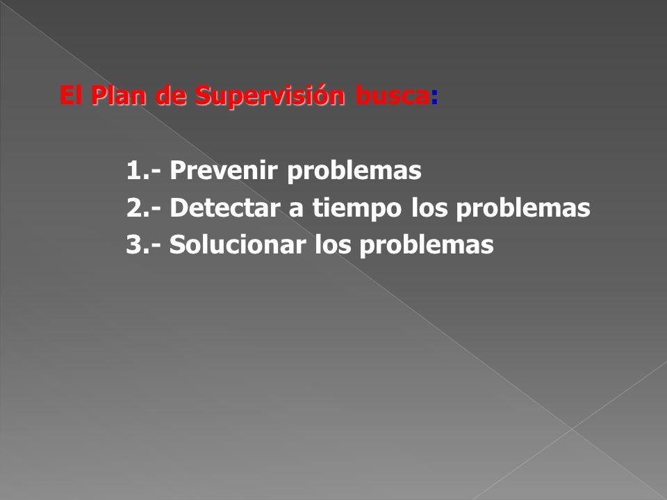 El Plan de Supervisión busca:
