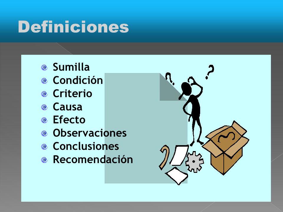 Definiciones Sumilla Condición Criterio Causa Efecto Observaciones