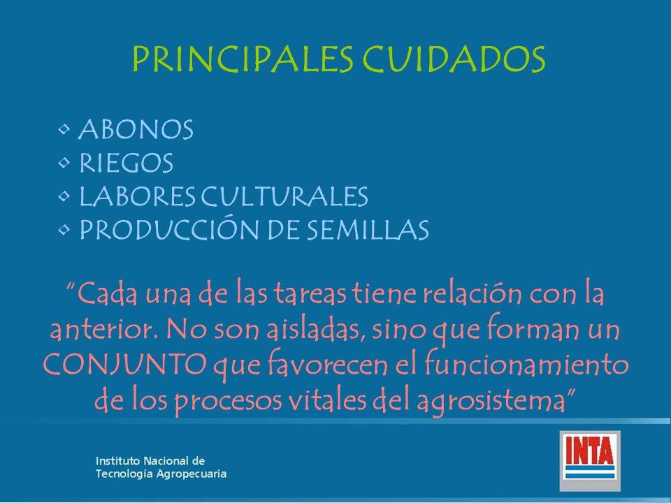 PRINCIPALES CUIDADOS ABONOS. RIEGOS. LABORES CULTURALES. PRODUCCIÓN DE SEMILLAS.