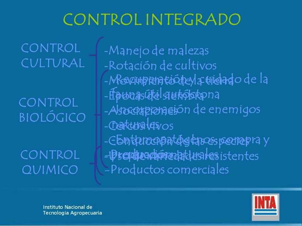 CONTROL INTEGRADO CONTROL CULTURAL Manejo de malezas
