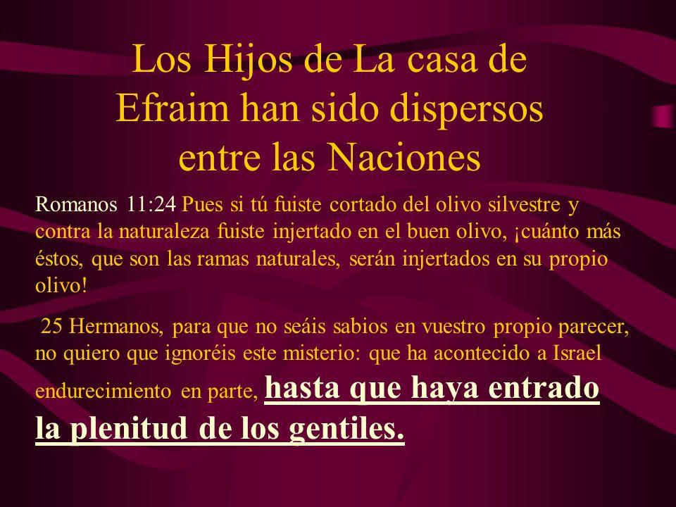 Los Hijos de La casa de Efraim han sido dispersos entre las Naciones